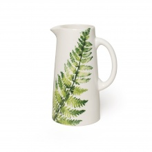 Pitcher Fern