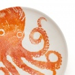 Supper Bowl Octopus Orange